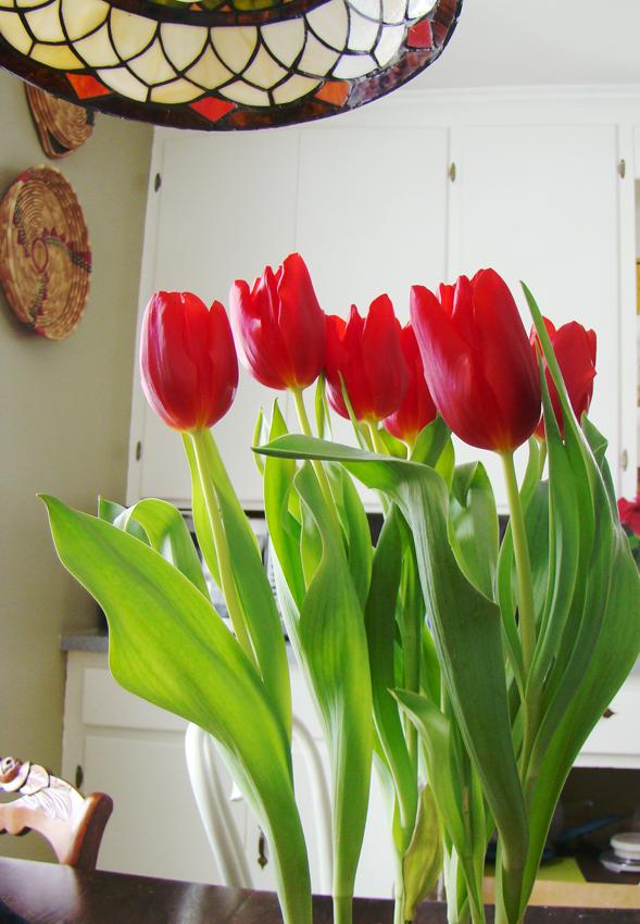 Valentinesday 1