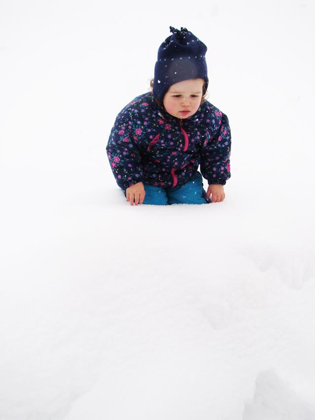 Snowday 33