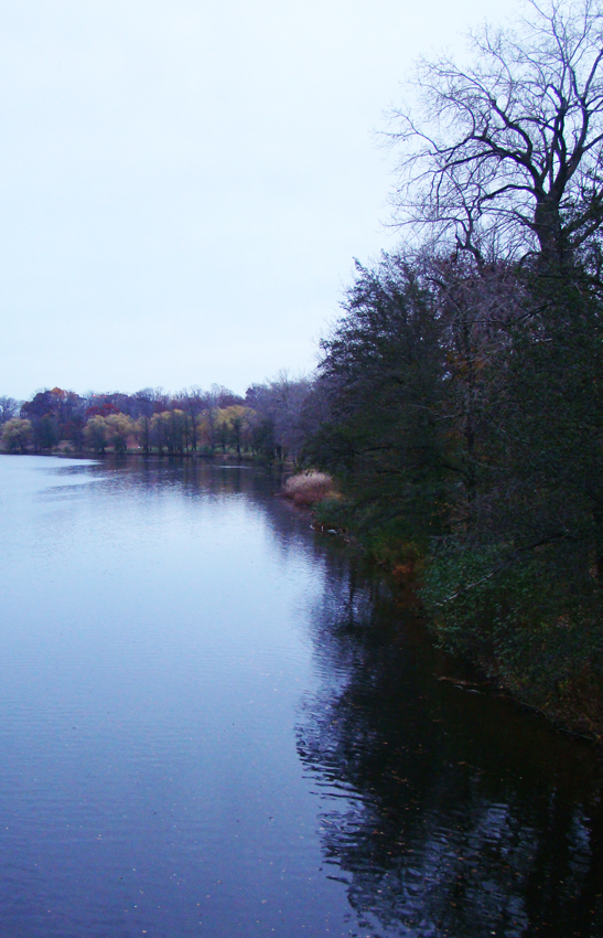 Evening walk 4