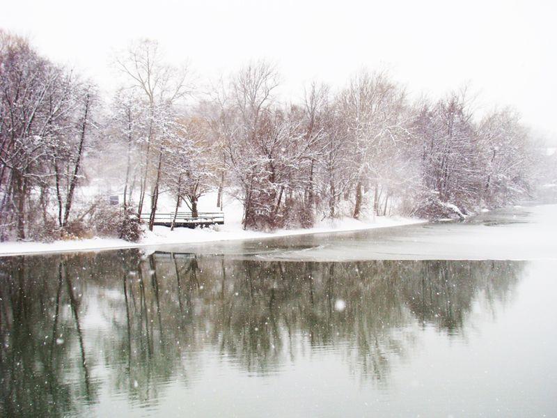 Snowdays 28