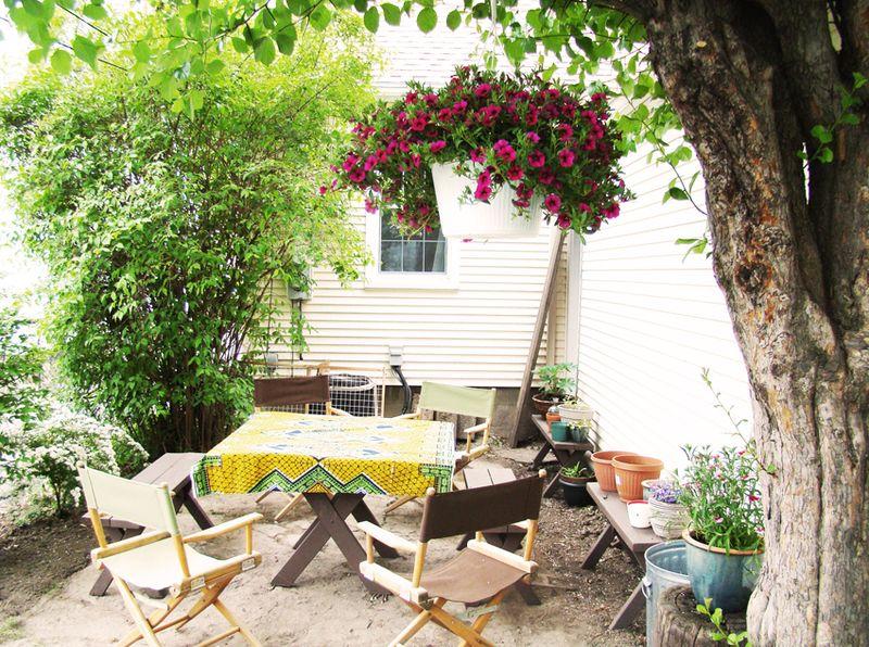 A garden 6