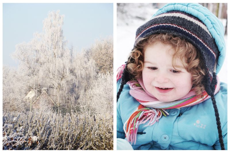 Winter in holland 5